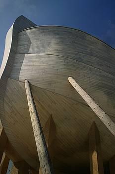 Ark by Sue Midlock