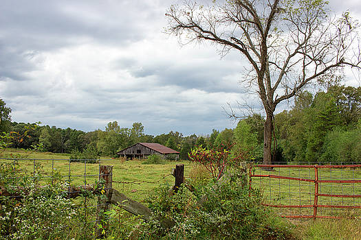 Arkansas Farm by Tammy Chesney