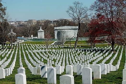 Arlington Cemetery by Lily K