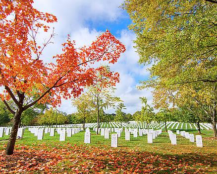 Arlington National Cemetery Fall Colors by Mark Andrew Thomas