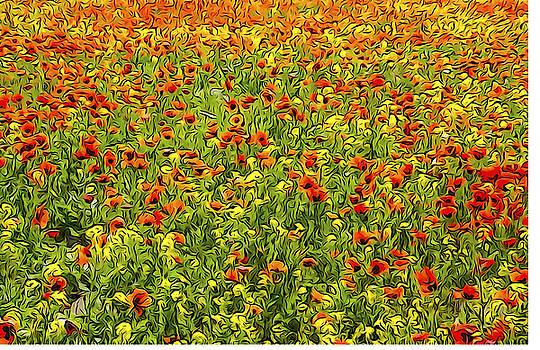 Dennis Cox - Armenian Flowers in Spring