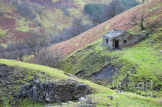 Arn Gill miner's hut by Gavin Dronfield