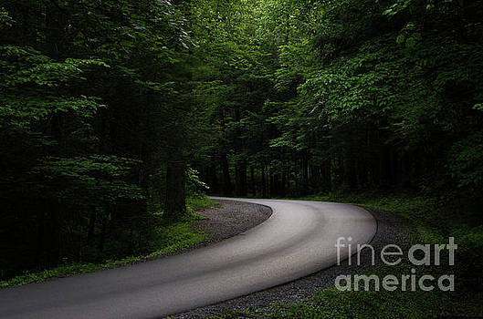 Around The Bend by Andrea Silies