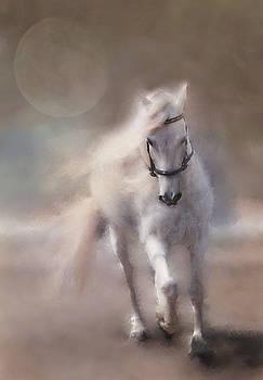 Papi ARPS Pale MOON by Sue Fulton