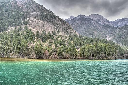Arrow Bamboo Lake by Bill Hamilton
