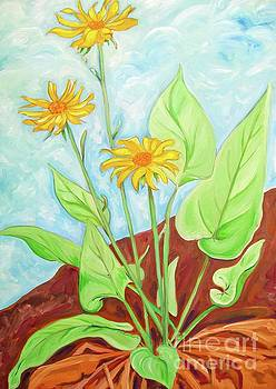 Arrowleaf Balsam Root by Cindy Ruprecht