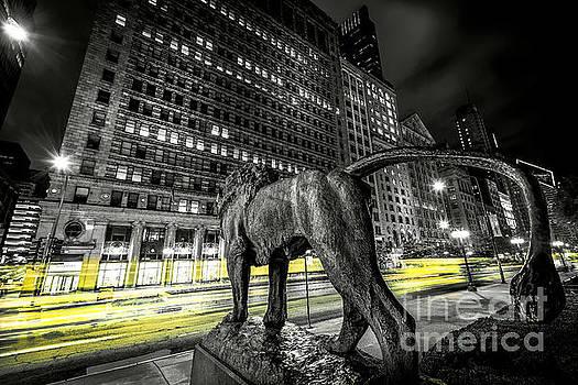 Art Institute Lion II - Chicago, IL by Demi Buckley