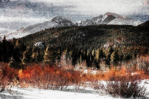 Art Series #4 by Garett Gabriel