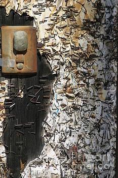 Chuck Kuhn - Art Telephone Graffiti Staples
