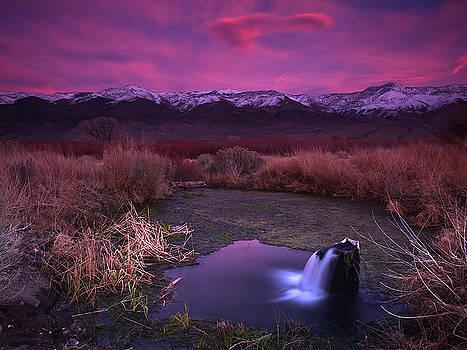 Artesian Sunset by Chris Morrison