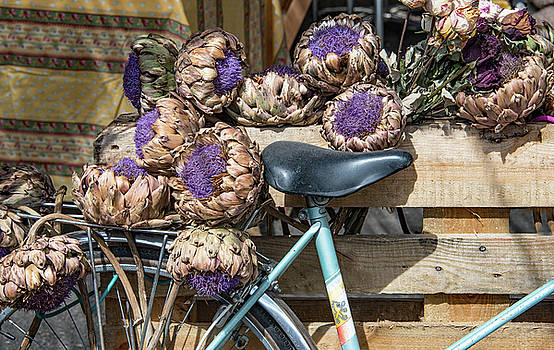 Artichoke Flowers with Bicycle by Kent Sorensen