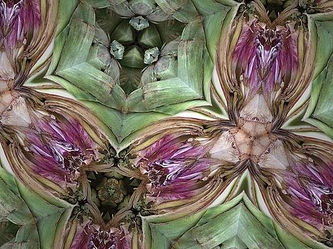 Artichoke Heart by Sylvan Adams