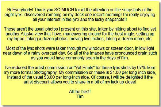 Artist Discount by Tim Newton