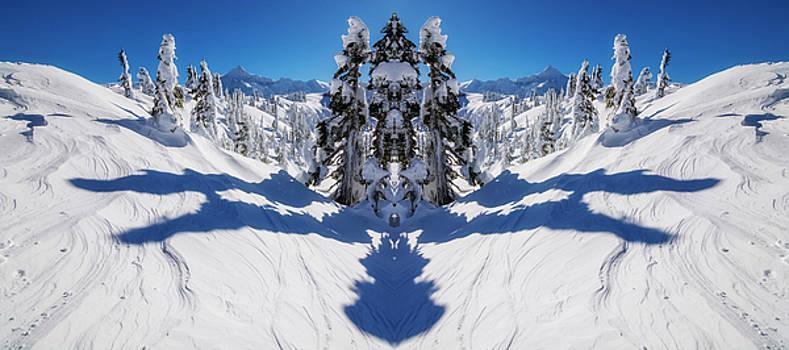 Pelo Blanco Photo - Artist Point Winter Reflection