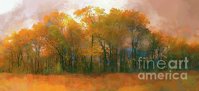 Dan Carmichael - Artistic Fall Colors in the Blue Ridge AP