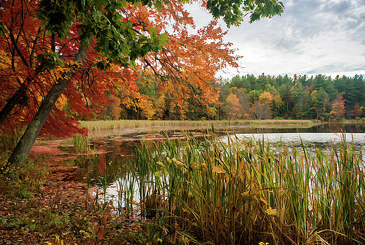 Artists Rendition of Fall by Lee Fortier