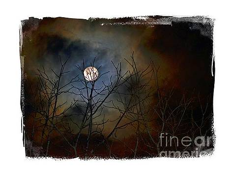 Artsy Moon by Lila Fisher-Wenzel