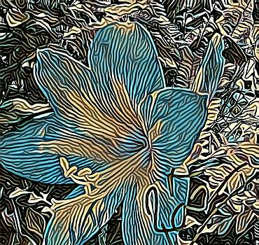 Rizwana A Mundewadi - Arty Amaryllis Flower