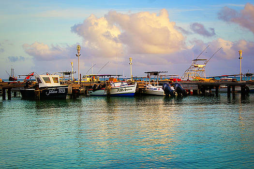 Aruba Harbor by Todd Dunham