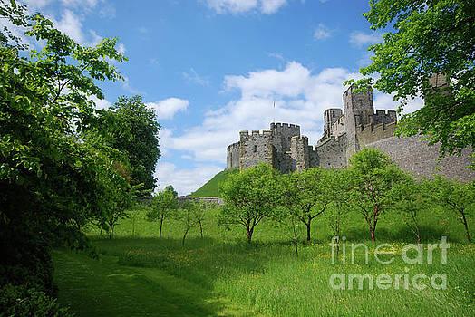 Arundel Castle by Richard Gibb