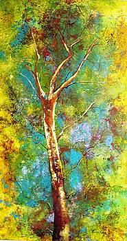 Arvore by Fernanda Cruz