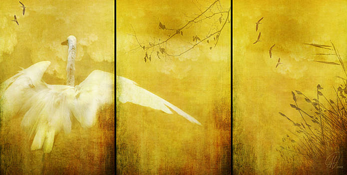 As Birds Fly Up..... by Margaret Hormann Bfa