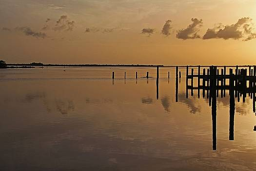 As Daylight Dissolves by Michiale Schneider