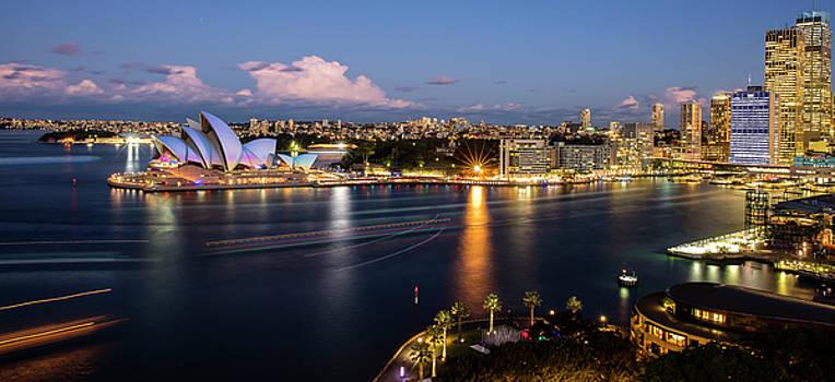 As Sydney Says Hi to Vivid by Renee Doyle