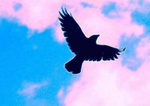 As The Crow Flies by Amy G Taylor