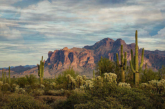 Saija Lehtonen - As The Evening Arrives in The Sonoran
