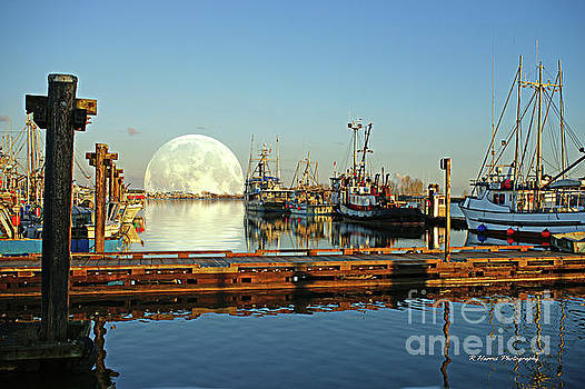 As the Moon Rises by Randy Harris