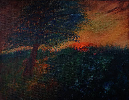 As the Sun Sets by Dick Bourgault