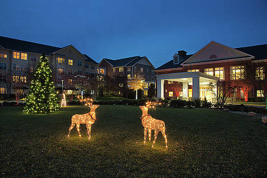 Ashby Ponds Christmas by Jack Nevitt
