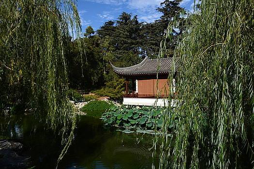 Asian House. by Atul Daimari