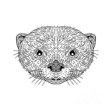 Asian Small-Clawed Otter Head Drawing by Aloysius Patrimonio