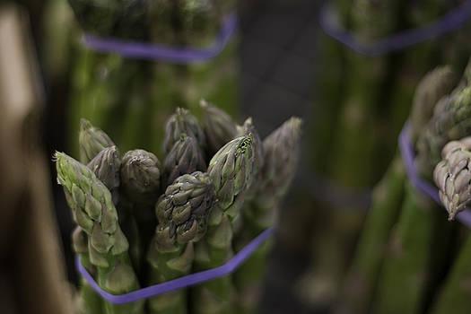Asparagus by Abby McCarthy
