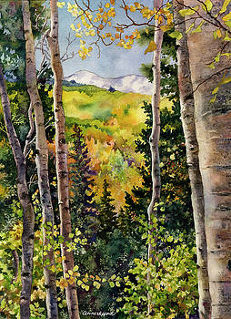Aspen Afternoon by Anne Gifford