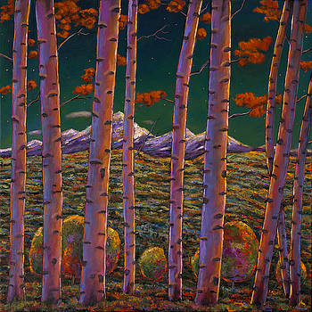 JOHNATHAN HARRIS - Aspen at Night