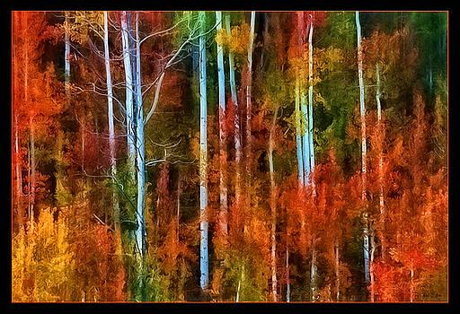 Aspen Autumn by Rod Stroh