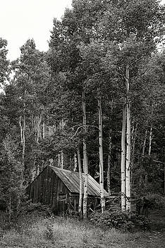 Aspen Cabin  by Bud Simpson