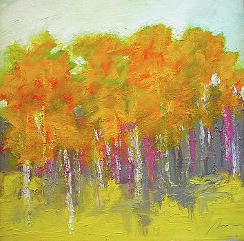 Aspen Fall by Richard Morin