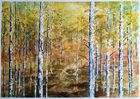 Aspen Forest by Holly Whiting