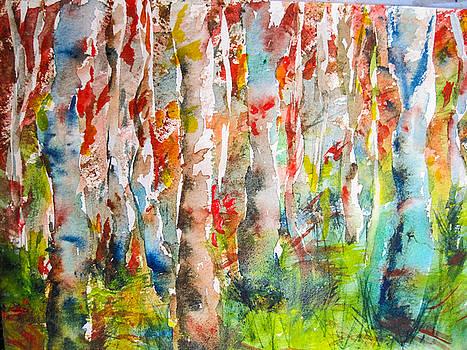 Aspen Grove by Corynne Hilbert