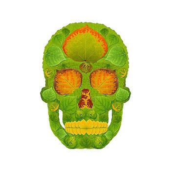 Aspen Leaf Skull 10 by Agustin Goba
