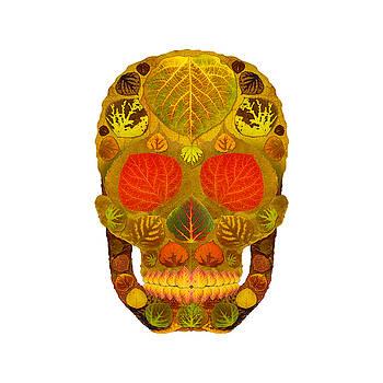 Aspen Leaf Skull 12 by Agustin Goba