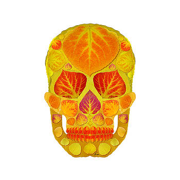 Aspen Leaf Skull 13 by Agustin Goba
