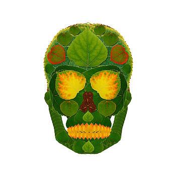 Aspen Leaf Skull 9 by Agustin Goba