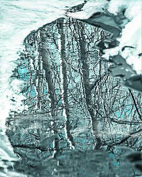 Aspen Reflection by L J Oakes