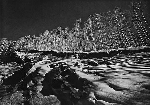 Aspen Ridgeline by John Gilroy