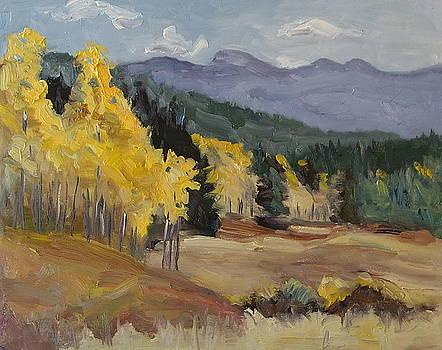 Aspen Tree Splash of Fall Steamboat Springs Colorado by Zanobia Shalks